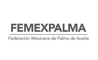 Tótem Estudio clientes video coorporativo Femexpalma