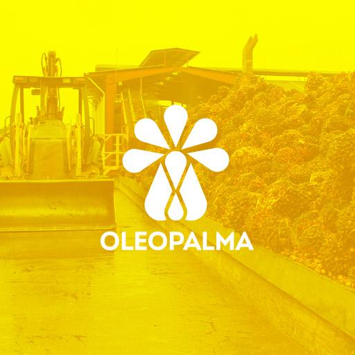 Tótem estudio portafolio cliente Oleopalma
