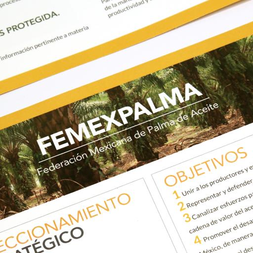 Tótem estudio portafolio cliente Femexpalma